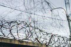 Abstrakte Abbildung des Stacheldrahts Stacheldraht auf Zaun mit dem blauen Himmel, zum sorgend zu glauben Lizenzfreie Stockfotos