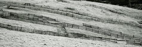 Abstrakte Ansicht der Bergwiese Lizenzfreies Stockbild