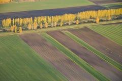 Abstrakte Ansicht der landwirtschaftlichen Felder und der Baum-Zeile Lizenzfreie Stockbilder