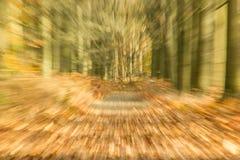 Abstrakte Bäume im Wald Stockbilder