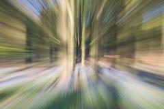 Abstrakte Bäume im Wald Stockbild