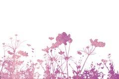 Abstrakte Beschaffenheiten der Blume Lizenzfreies Stockbild