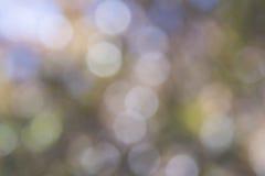 Abstrakte Beschaffenheiten: Natürliches Laub als unscharfes mehrfarbiges Boke Lizenzfreie Stockbilder