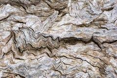 Abstrakte Beschaffenheiten und Formen: Alter hölzerner Klotz Stockfotografie