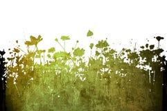 Abstrakte Beschaffenheiten und Hintergründe der Blume Lizenzfreie Stockfotografie