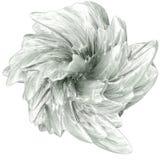 Abstrakte Blume Lizenzfreie Stockfotos