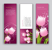 Abstrakte Blumenfahnen. Hintergründe des Vektor-Eps10. Stockbilder
