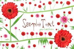 Abstrakte Blumenkarte Stockfotografie