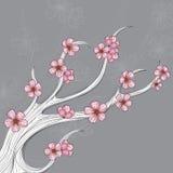 Abstrakte Blumenniederlassung für Frühling Lizenzfreie Stockfotos