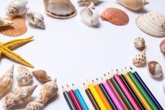 Abstrakte bunte Bleistifte und Starfish auf Weiß Stockfotos