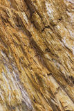 Abstrakte bunte Felsenbeschaffenheit 2 Lizenzfreie Stockbilder