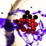Abstrakte, bunte Zusammensetzung mit Öl, Wasser und Tinte Lizenzfreies Stockbild