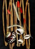 Abstrakte Fantasie des Meeres shells nave Hintergrund Stockfotos