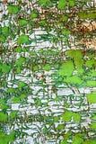 Abstrakte Farben lizenzfreie stockbilder