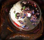Abstrakte Farben-runde Samenkapsel Lizenzfreie Stockfotos
