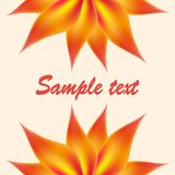 Abstrakte Farbmaschenblume Stockfoto