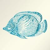 Abstrakte Fische lizenzfreie abbildung