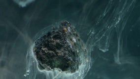 Abstrakte flüssige Tinte im Wasser mit Stein Lizenzfreies Stockfoto