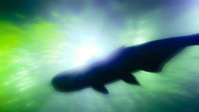 Abstrakte Fotos innerhalb der verwischten Aquarium Fotozusammenfassung summen laut Viele Farben Stockbilder
