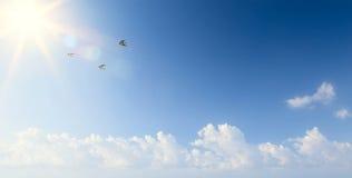 Abstrakte Frühlingsmorgenlandschaft mit Fliegenvögeln im Himmel lizenzfreie stockfotografie
