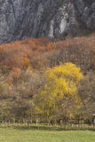 Abstrakte Gebirgsherbstlandschaft stockbilder
