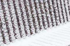 Abstrakte geometrische Muster auf einer schneebedeckten Bank Lizenzfreie Stockfotos
