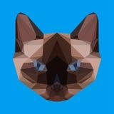 Abstrakte geometrische polygonale siamesische Katze Lizenzfreies Stockfoto
