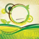Abstrakte grüne Retro- Broschüre Stockbild