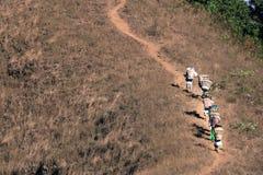 Abstrakte Gruppen des Trägers oder des Sherpas beim Tragen des Gepäckes des Trekkings bis zur Spitze von Doi Monjong der Berg in  stockbild