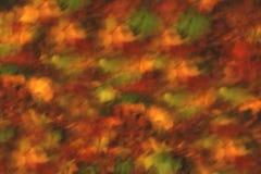 Abstrakte Herbstfarben Stockbild