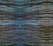 Abstrakte Hintergrundbeschaffenheit der Natur - Betriebsdetail Stockfotografie