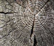 Abstrakte Hintergrundbeschaffenheit des Holzes lizenzfreies stockfoto