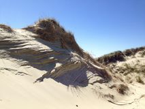 Abstrakte Linie Muster in den Dünen der Nordsee lizenzfreie stockbilder