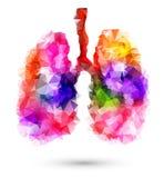 Abstrakte menschliche Lungen mit mehrfarbigem Polygon auf Weiß Stockbild
