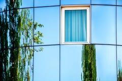 Abstrakte moderne ovale Fassade mit Glas und Reflexion des grünen Baums Stockfotografie