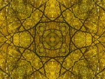 Abstrakte Niederlassungen und geometrische Natur des Herbstlaubs Lizenzfreies Stockfoto