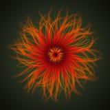 Abstrakte organische Blume Lizenzfreie Abbildung