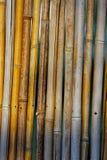 Abstrakte Reedbeschaffenheit Lizenzfreies Stockbild