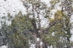 Abstrakte Regentropfentropfen Stockfotografie