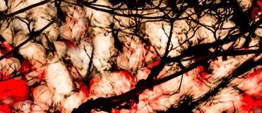 Abstrakte rote u. weiße Bokeh-Lichter Stockfotografie