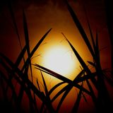 Abstrakte Schattenbildzahl mit Sonnenaufgang Lizenzfreies Stockbild