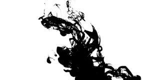 Abstrakte schwarze Tinte im Wasser auf weißem Hintergrund stock footage