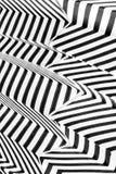 Abstrakte Schwarzweiss-Streifen Stockfotografie