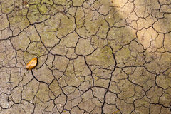 Abstrakte Sprungsbeschaffenheit auf Hintergrund des trockenen Bodens Stockfotografie