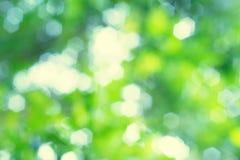 Abstrakte Unschärfe des grünen bokeh Stockbild