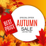 Abstrakte Vektor-Illustration Autumn Sale Background mit fallendem Autumn Leaves Stockfotografie