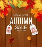 Abstrakte Vektor-Illustration Autumn Sale Background mit fallendem Autumn Leaves Stockbild