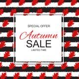 Abstrakte Vektor-Illustration Autumn Sale Background mit fallendem Autumn Leaves Stockbilder