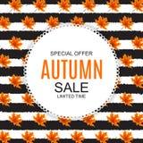 Abstrakte Vektor-Illustration Autumn Sale Background mit fallendem Autumn Leaves Lizenzfreies Stockbild