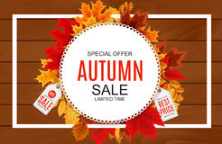 Abstrakte Vektor-Illustration Autumn Sale Background mit fallendem Autumn Leaves Lizenzfreie Stockfotos
